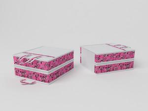 Чемоданчик для хранения обуви на 6 пар, 35х40х20см 10013