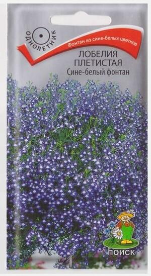 Лобелия Сине-белый фонтан плетистая