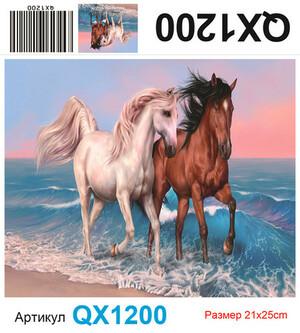 АЧ QX1200, 21х25 см