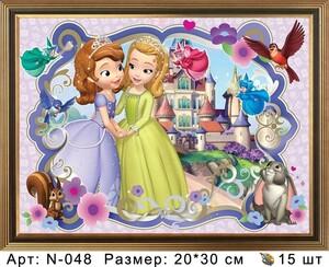 N-048 Картины 20х30 N