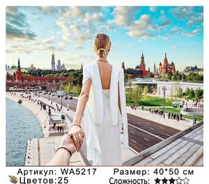 WA5217 Картины 40х50 WA