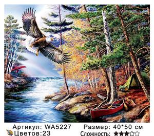 WA5227 Картины 40х50 WA