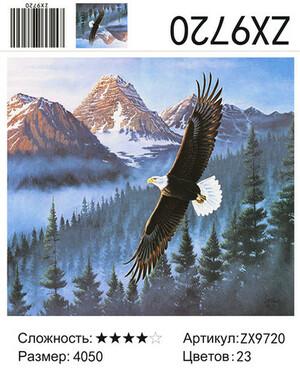 АМ45 ZX9720, 40х50 см