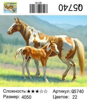 РН Q5740, 40х50 см