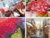 Цветной-Картины по номерам, алмазная мозаика, вышивка лентами и др!!! СКИДКИ до 60%.