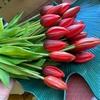 Цветы, как живые