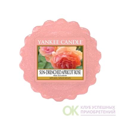 1577164EТарталетка восковая Персиковая роза