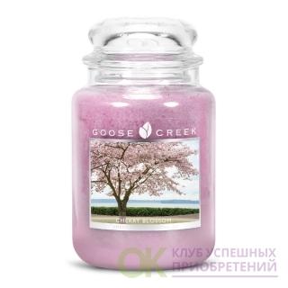 CHERRY BLOSSOM/ ВИШНЯ В ЦВЕТУ (ярко-розовые цветки заполняют сельскую местность неземным, истинным вишневым ароматом)