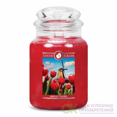 BREEZY TULIPS /СВЕЖИЕ ТЮЛЬПАНЫ (Весна начинает цвести, поскольку свежий аромат ярко-красных тюльпанов наполняет голландский воздух)