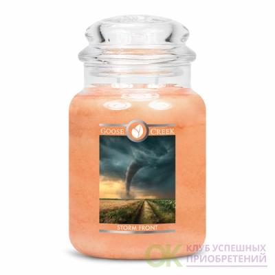 STORM FRONT / ШТОРМОВОЙ ФРОНТ (вспышка молнии наполняет небо, пока вы сидите и восхищаетесь красотой мягкого летнего шторма.)