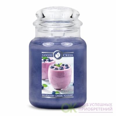BLUEBERRY GREEK YOGURT / ЧЕРНИЧНЫЙ ГРЕЧЕСКИЙ ЙОГУРТ (Возьмите ложку и побалуйте себя сладким ягодным йогуртом )