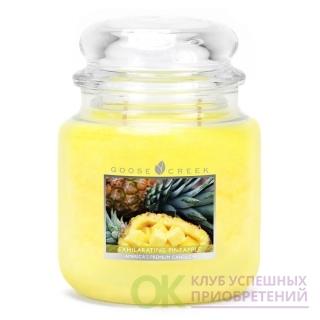 EXHILARATING PINEAPPLE/ БОДРЯЩИЙ АНАНАС (Восхитительный аромат мирного рая. Этот свежесрезанный ананас пахнет прохладой, сладостью и сахаром.)