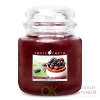MULBERRY/ ШЕЛКОВИЦА (наслаждайтесь оживленной, фруктовой, дикой шелковичной смесью)