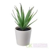 FEJKA ФЕЙКА Искусственное растение и кашпо 6 см